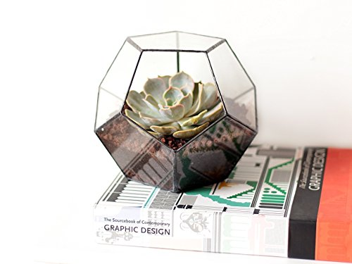 Waen-Glass Terrarium Fall Décor