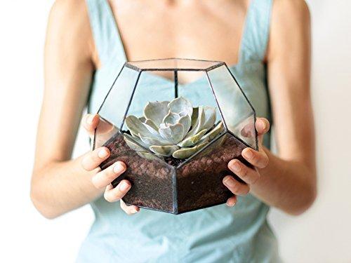Waen-Glass Terrarium Fall Décor