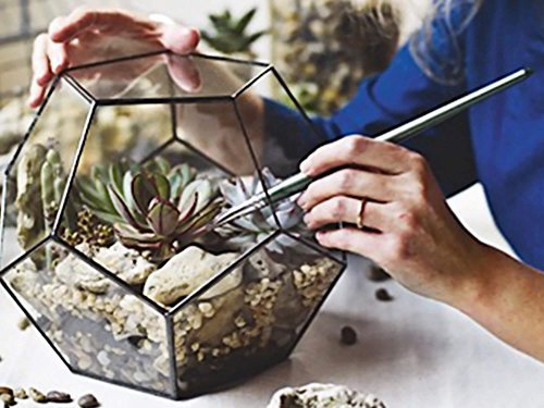 Waen-Large Geometric Glass Terrarium Container