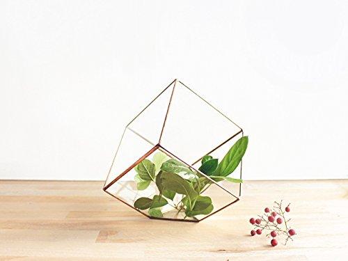 Waen-Cube Planter Geometric Terrarium