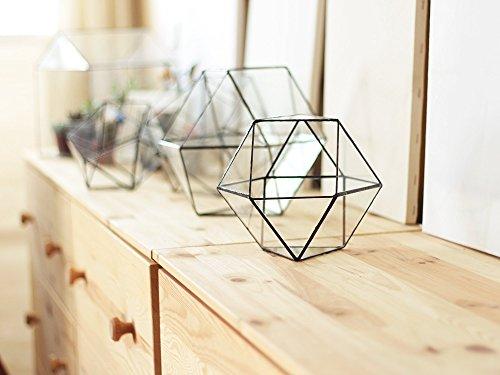 Waen-Large Geometric Terrarium