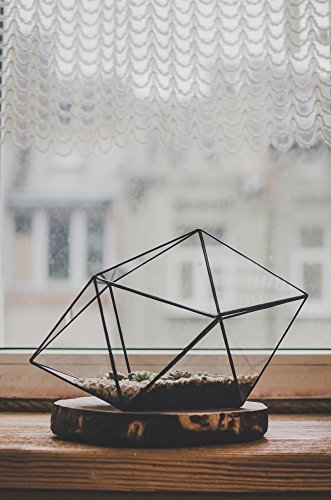 Leosklo-Terrarium Large Strange shape Stained Glass terrarium Succulent Flowerpot