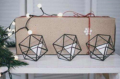 Leosklo-Set of three Xmas Gift box Terrariums