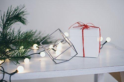 Leosklo-Mini Cube Terrarium