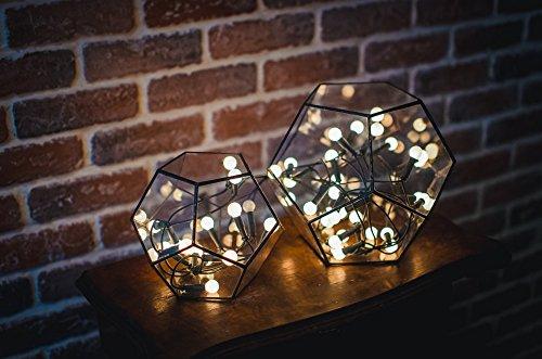 Leosklo-Set of 2 Terrarium Dodecahedron