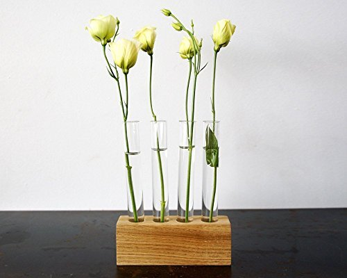 Moss + Twig-Test Tube Flower Bud Vase