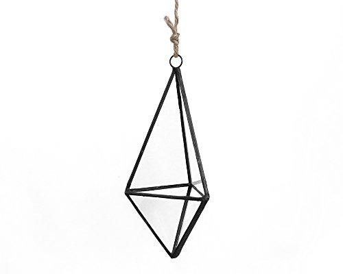 Moss + Twig-Hanging Glass Geo Terrarium Kit