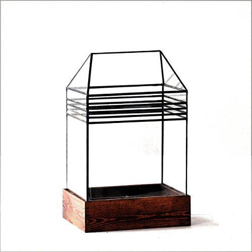 LeadHeadGlass-Art Deco Terrarium