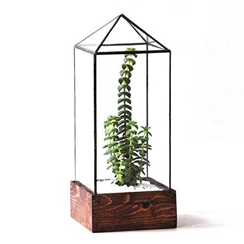 LeadHeadGlass-Tower Glass Terrarium