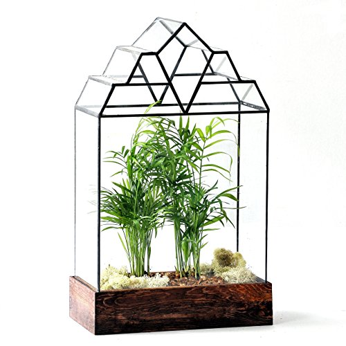 LeadHeadGlass-Art Deco Glass Terrarium