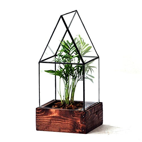 LeadHeadGlass-Cape Cod Terrarium