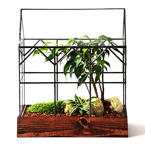 LeadHeadGlass-Large Glass Terrarium