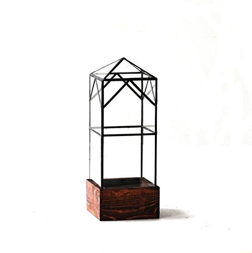 LeadHeadGlass-Tower Terrarium Traditional