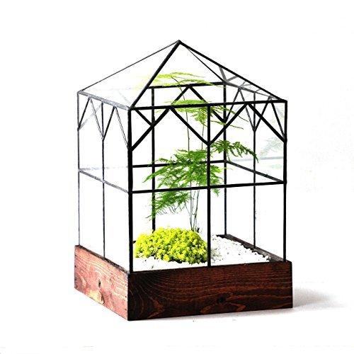 LeadHeadGlass-Glass Terrarium