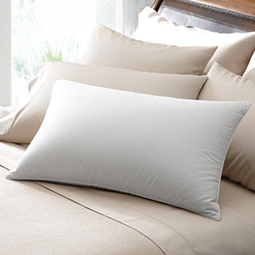 OrganicTextiles-Natural Organic Eco-friendly Alternative Down Pillow - Dual Pack
