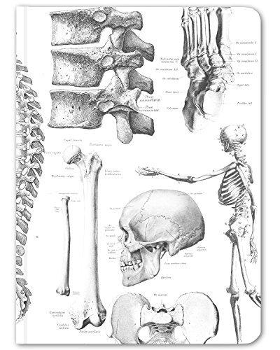 Cognitive Surplus-White Skeleton Anatomy Medical Illustration Notebook