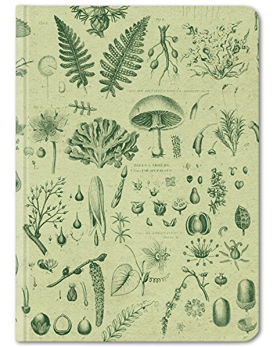 Cognitive Surplus-Green Plants & Fungi Botanical Illustration Notebook