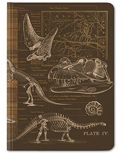 Cognitive Surplus- Brown Dinosaur Bones Paleontology Scientific Illustration Notebook