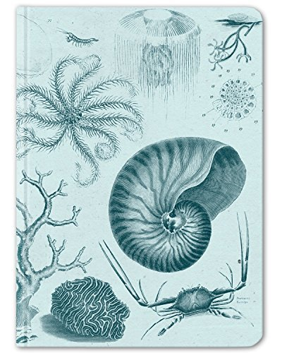 Cognitive Surplus-Blue Shallow Seas Scientific Illustration Notebook