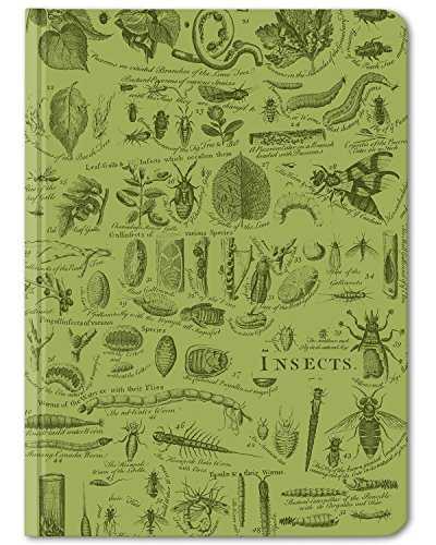 Cognitive Surplus-Green Insects Entomology Bug Illustration Notebook